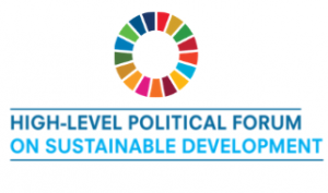 logo of the High-Level Political Forum